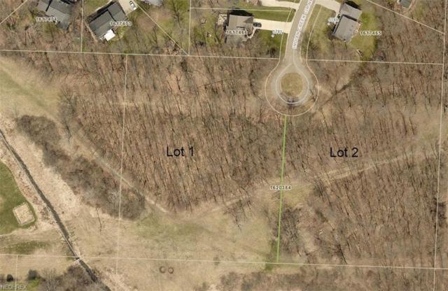 Indian Creek Cir NW, Jackson Township, OH 44718 (MLS #4027137) :: The Crockett Team, Howard Hanna