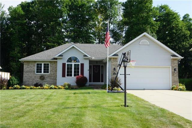 665 Meadowlark Rd, Painesville, OH 44077 (MLS #4027238) :: The Crockett Team, Howard Hanna