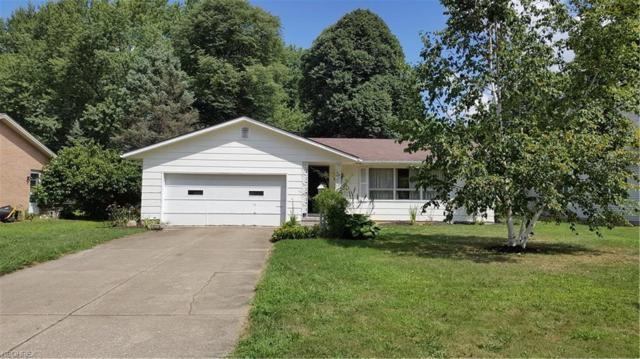 260 Falk Ave, Wadsworth, OH 44281 (MLS #4027316) :: The Crockett Team, Howard Hanna