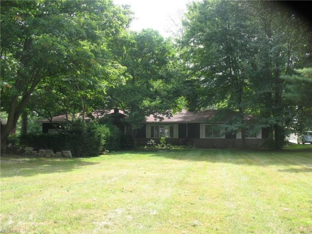 10726 Johnnycake Ridge Rd, Concord, OH 44077 (MLS #4027401) :: The Crockett Team, Howard Hanna