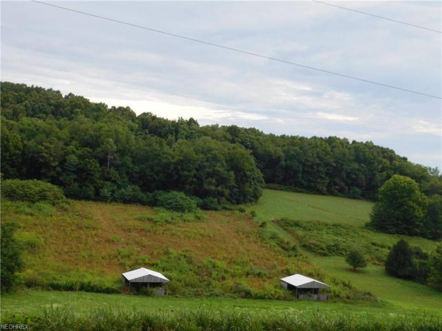 Lorric Road Nw, Minerva, OH 44657 (MLS #4027664) :: The Crockett Team, Howard Hanna