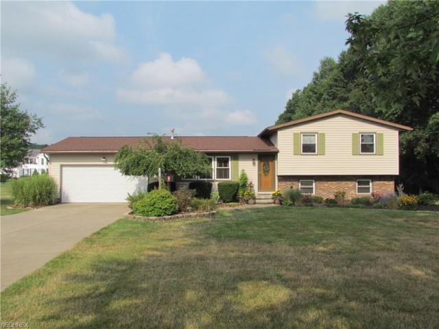 4873 Industry Rd, Ravenna, OH 44266 (MLS #4027712) :: Keller Williams Chervenic Realty