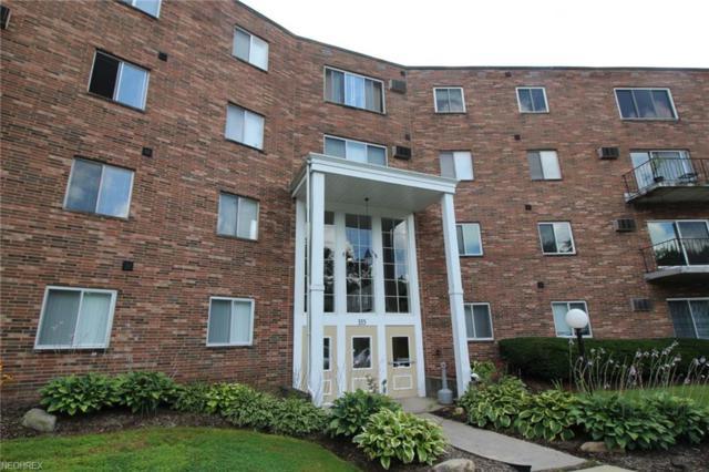 355 Solon Rd #108, Chagrin Falls, OH 44022 (MLS #4027908) :: The Crockett Team, Howard Hanna