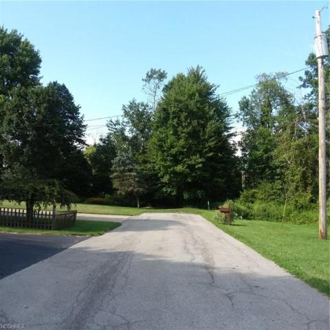 State Route 7, Masury, OH 44438 (MLS #4028029) :: The Crockett Team, Howard Hanna