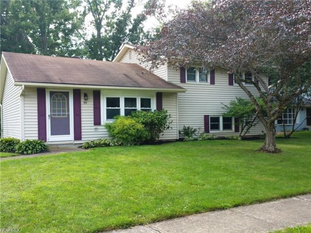 1001 Provincetown Ct, Grafton, OH 44044 (MLS #4028404) :: RE/MAX Trends Realty