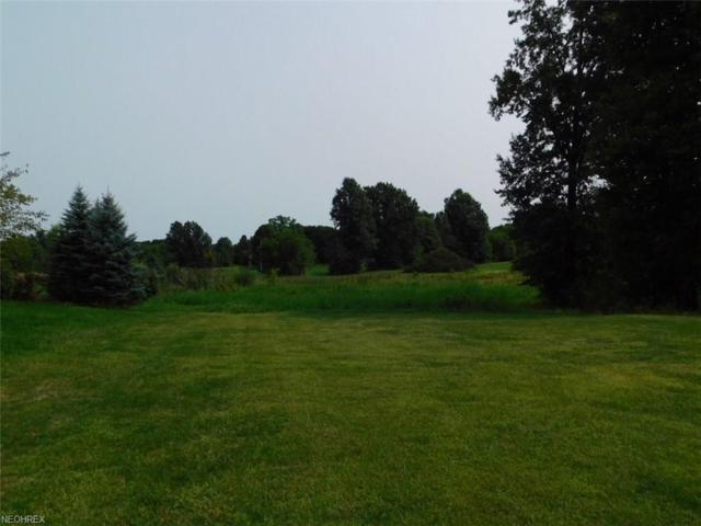 14 Bricker Farms Ln, Salem, OH 44460 (MLS #4028414) :: RE/MAX Valley Real Estate