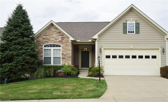 854 Willow Creek Dr, Fairlawn, OH 44333 (MLS #4028582) :: RE/MAX Trends Realty