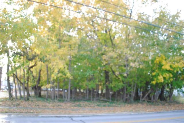 0000 W 231st St, North Olmsted, OH 44070 (MLS #4028584) :: The Crockett Team, Howard Hanna