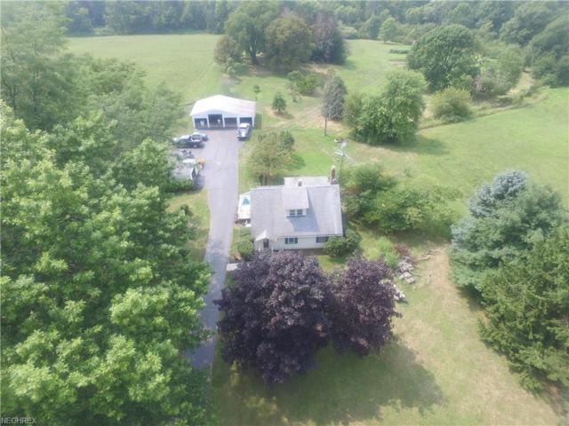 3997 Leetonia Rd, Leetonia, OH 44431 (MLS #4028914) :: The Crockett Team, Howard Hanna