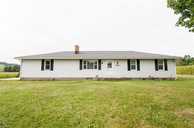 33684 State Route 518, Summitville, OH 44423 (MLS #4029253) :: RE/MAX Trends Realty