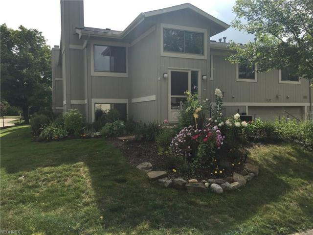 7169 N Downing Pl, Concord, OH 44077 (MLS #4029407) :: Keller Williams Chervenic Realty