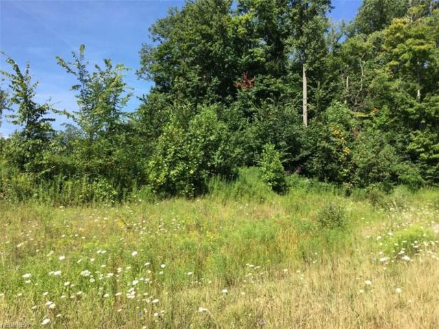Firwood Ln, Chagrin Falls, OH 44023 (MLS #4029410) :: The Crockett Team, Howard Hanna