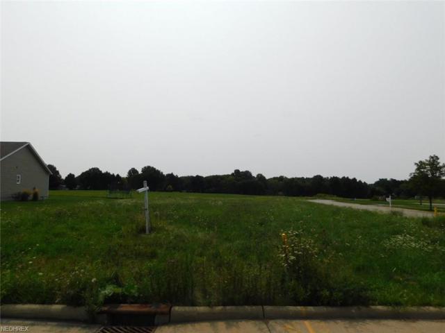 47 Orchard Bend Dr, Salem, OH 44460 (MLS #4029670) :: RE/MAX Valley Real Estate