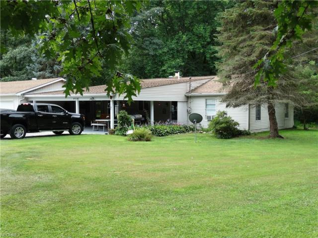 15889 Moseley Rd, Thompson, OH 44086 (MLS #4029678) :: RE/MAX Edge Realty