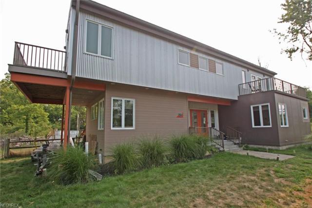 816 Woodford Rd, Kelleys Island, OH 44054 (MLS #4029912) :: PERNUS & DRENIK Team