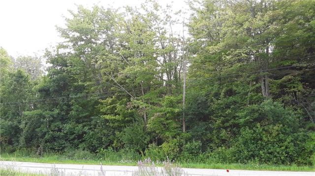 Dewey Road, Thompson, OH 44086 (MLS #4030232) :: The Crockett Team, Howard Hanna