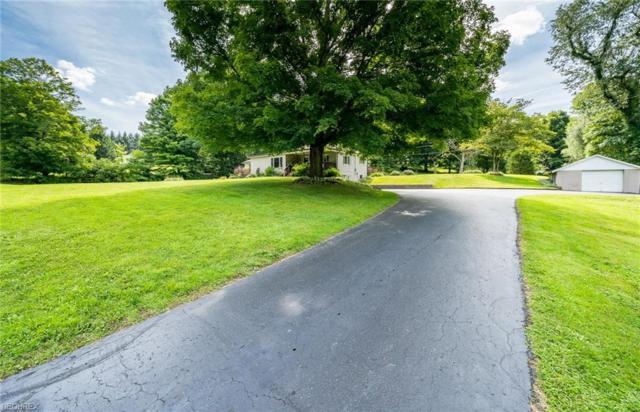5296 Pioneer Trl, Mantua, OH 44255 (MLS #4030545) :: Keller Williams Chervenic Realty