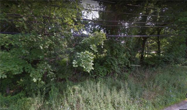 V/L W High St, Mantua, OH 44255 (MLS #4030726) :: RE/MAX Edge Realty