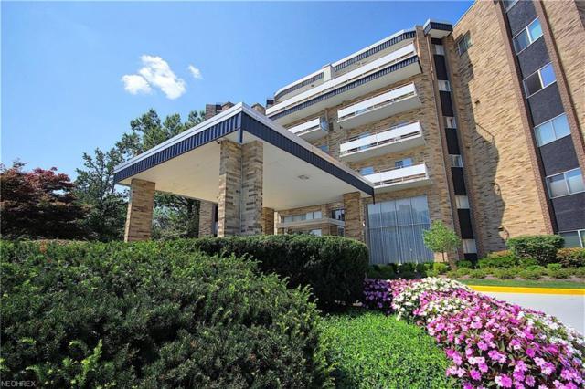 2112 Acacia Park Dr #609, Lyndhurst, OH 44124 (MLS #4030874) :: Keller Williams Chervenic Realty