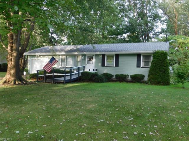 6920 Sanborn Rd, Saybrook, OH 44004 (MLS #4030892) :: Keller Williams Chervenic Realty