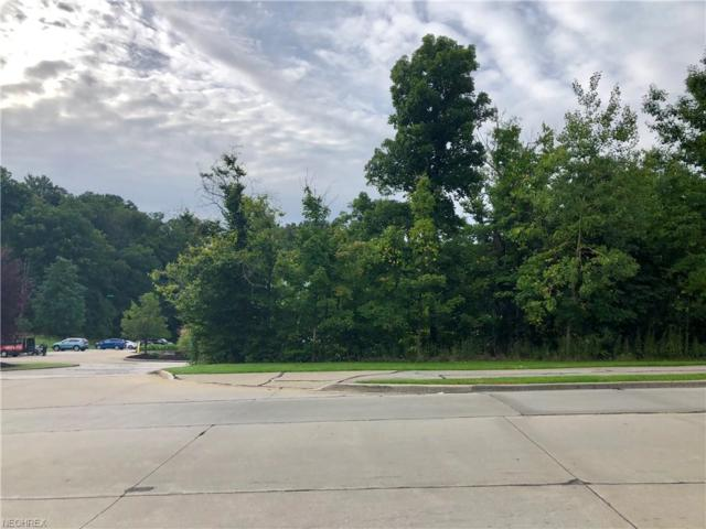 22965 Forbes Rd, Oakwood Village, OH 44146 (MLS #4030928) :: RE/MAX Edge Realty