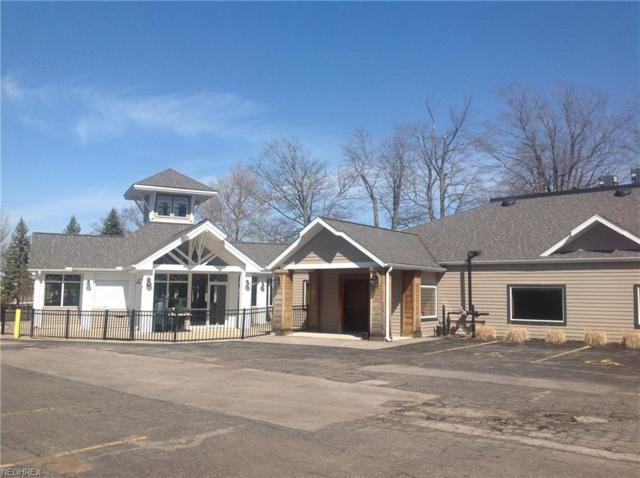 5205 Lake Rd W, Ashtabula, OH 44004 (MLS #4031300) :: Keller Williams Chervenic Realty