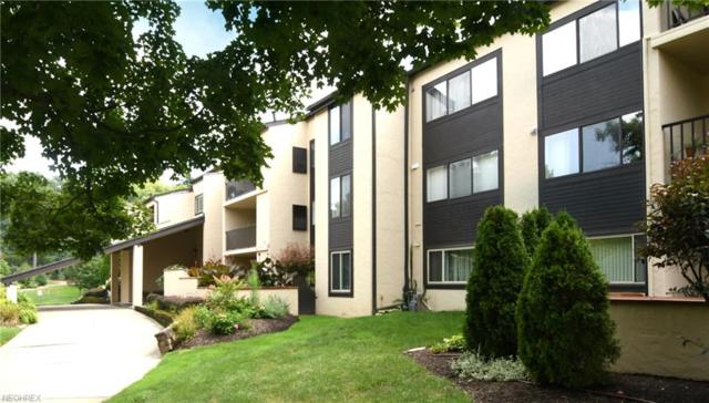 1006 Bunker Dr #104, Fairlawn, OH 44333 (MLS #4031645) :: RE/MAX Trends Realty