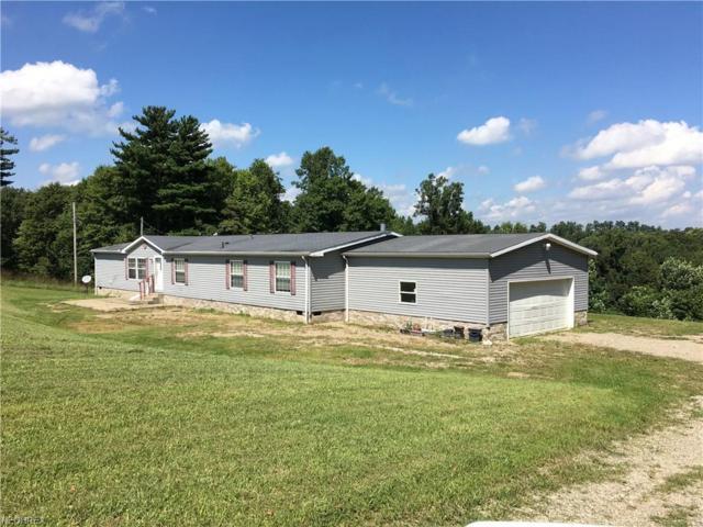 11597 Blue Ridge Rd, Newcomerstown, OH 43832 (MLS #4033210) :: PERNUS & DRENIK Team