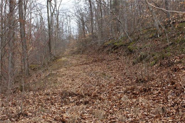 20/3 Wilson Run, Other, WV 26419 (MLS #4033302) :: RE/MAX Edge Realty