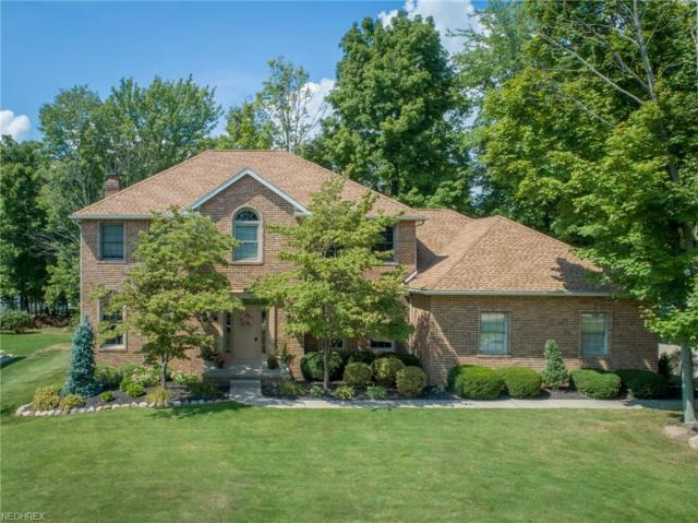 334 Carol Way, Wadsworth, OH 44281 (MLS #4033512) :: RE/MAX Trends Realty