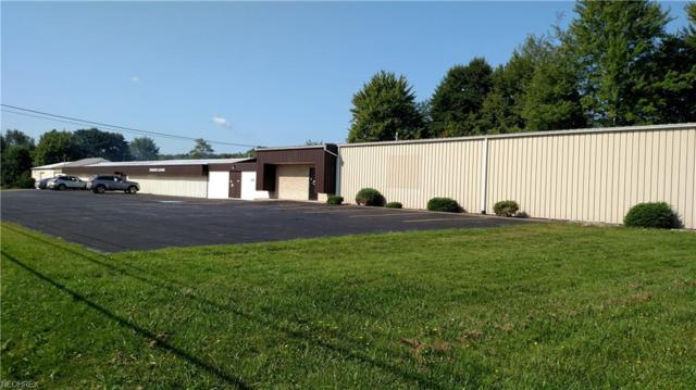 4761 State Route 193, Kingsville, OH 44048 (MLS #4033527) :: The Crockett Team, Howard Hanna