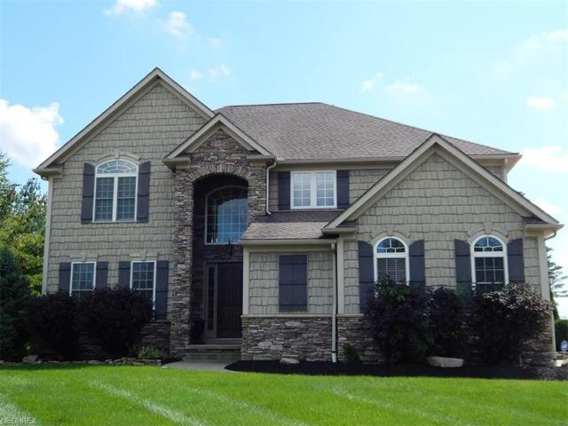 3238 Blue Heron Ter, Medina, OH 44256 (MLS #4033943) :: RE/MAX Edge Realty