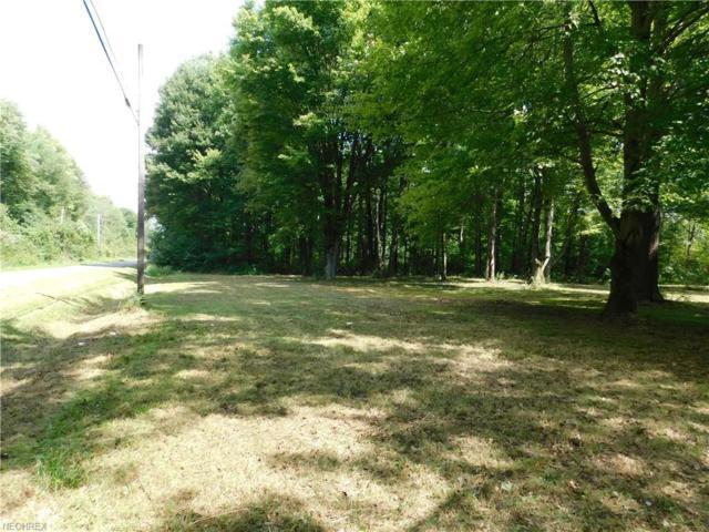 Ravenna Rd, Newton Falls, OH 44444 (MLS #4034032) :: RE/MAX Edge Realty