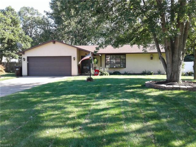 439 Oaknoll Dr, Amherst, OH 44001 (MLS #4034132) :: RE/MAX Trends Realty