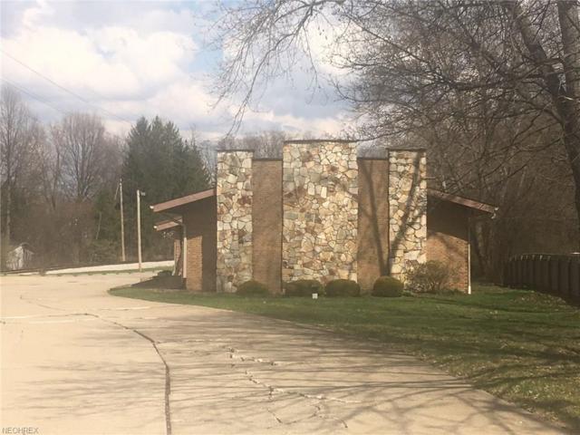 927 N Portage Path, Akron, OH 44303 (MLS #4034791) :: The Crockett Team, Howard Hanna