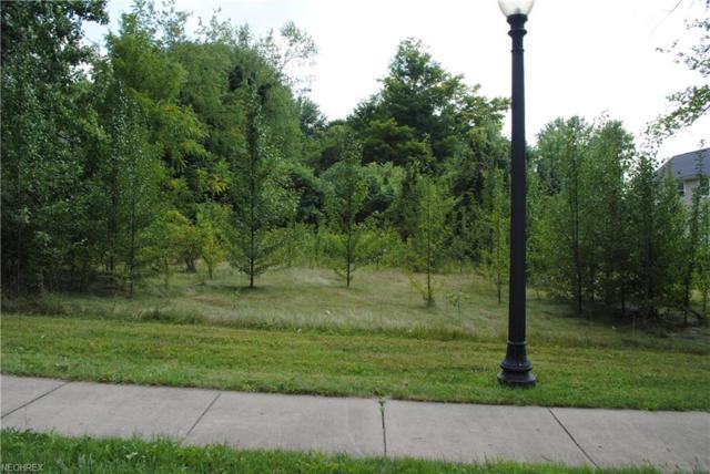 8496 E Market St, Warren, OH 44484 (MLS #4035028) :: RE/MAX Valley Real Estate