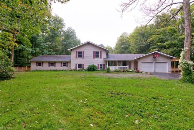 13230 Crows Hollow Dr, Chardon, OH 44024 (MLS #4035253) :: RE/MAX Edge Realty