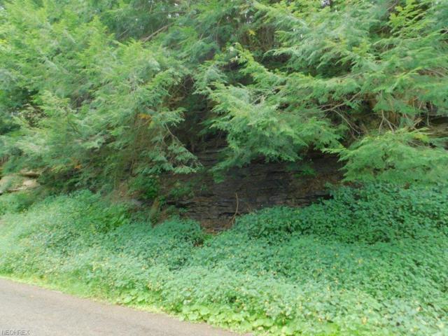 Twp Road 629, Loudonville, OH 44628 (MLS #4035499) :: Keller Williams Chervenic Realty