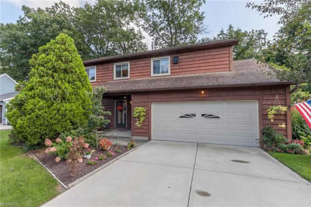 25401 Tyndall Falls Dr, Olmsted Falls, OH 44138 (MLS #4035880) :: Keller Williams Chervenic Realty