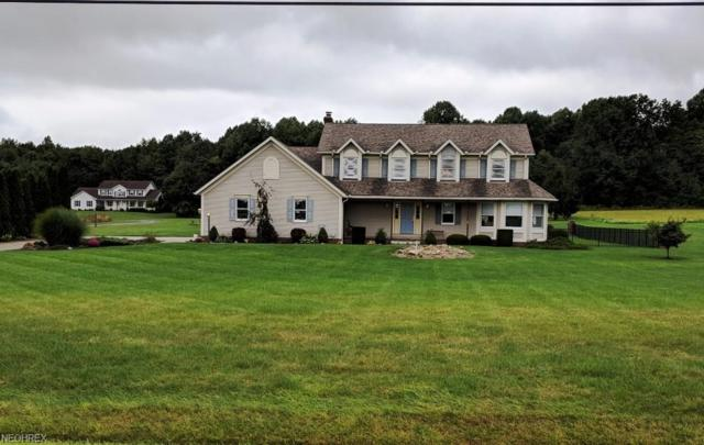 3817 Webb Rd, Ravenna, OH 44266 (MLS #4036151) :: Tammy Grogan and Associates at Cutler Real Estate