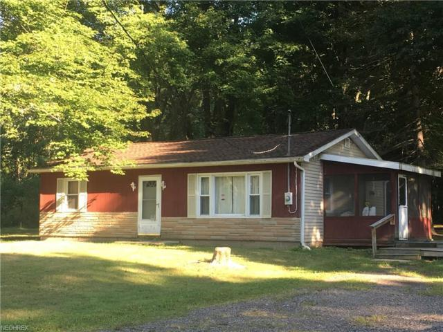 10235 Silica Sand Rd, Garrettsville, OH 44231 (MLS #4036419) :: RE/MAX Edge Realty