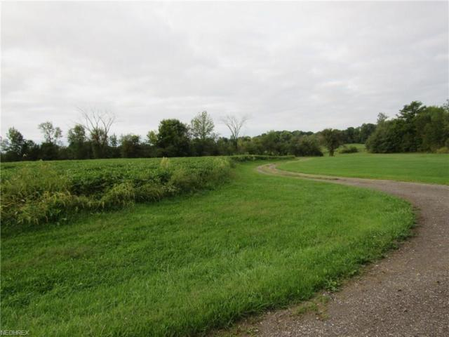 State Route 88, Garrettsville, OH 44231 (MLS #4036651) :: Keller Williams Chervenic Realty