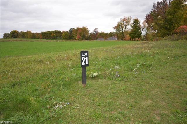 1591 Pebblecreek Dr, Akron, OH 44333 (MLS #4037539) :: Keller Williams Chervenic Realty