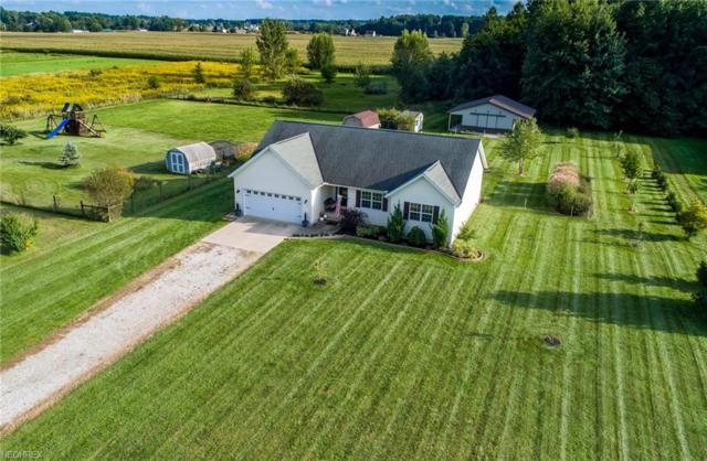 613 Township Road 150, Sullivan, OH 44880 (MLS #4037933) :: RE/MAX Edge Realty