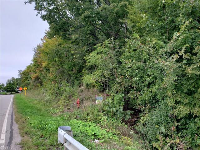 V/L Greenwich & Lake Rd, Seville, OH 44273 (MLS #4037940) :: RE/MAX Edge Realty