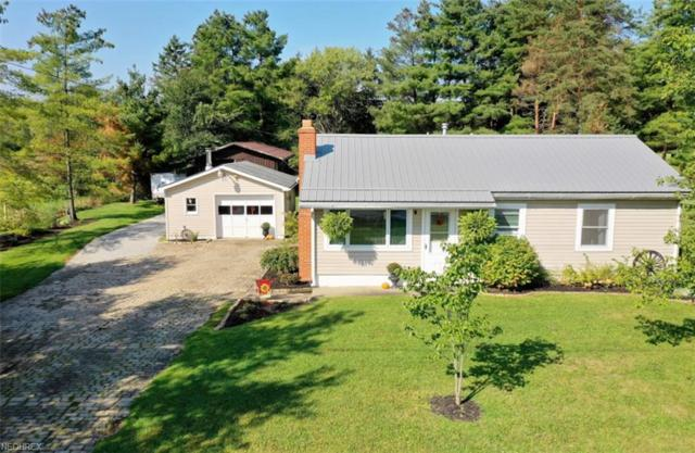 5821 State Route 534, West Farmington, OH 44491 (MLS #4038189) :: RE/MAX Valley Real Estate