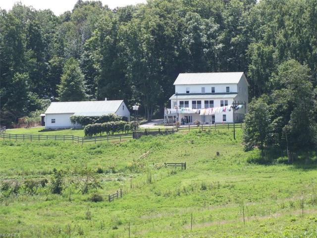 1606 Dan T Davis Rd, Oak Hill, OH 45656 (MLS #4038273) :: Keller Williams Chervenic Realty