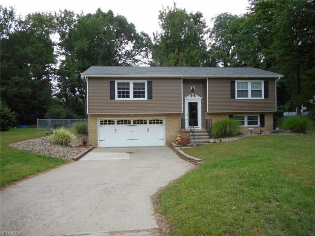 2501 Southwood Rd, Painesville, OH 44077 (MLS #4038350) :: Tammy Grogan and Associates at Cutler Real Estate