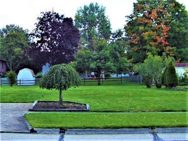 471 Tulip Trl, Wadsworth, OH 44281 (MLS #4038381) :: Keller Williams Chervenic Realty