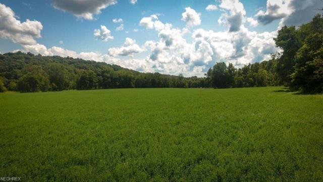 State Route 60, Killbuck, OH 44637 (MLS #4038396) :: RE/MAX Edge Realty
